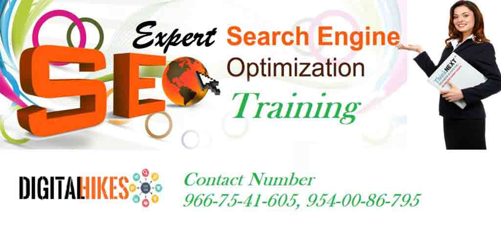 Expert SEO Training Institute Delhi