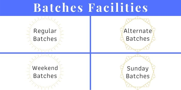 Digital Marketing Batches Facilities